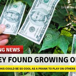 Create Funny Headlines
