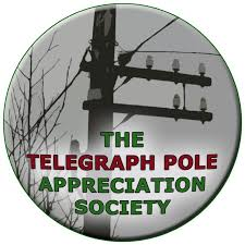 telegraph pole appreciation