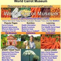 World Carrot Museum