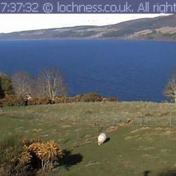 Loch Ness Monster Spotter