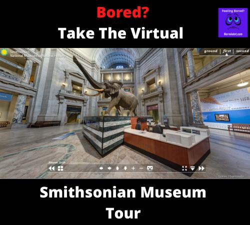 Smithsonian Museum Virtual Tour