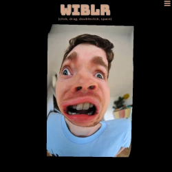 Make Your Own Wobbly Funny Faces