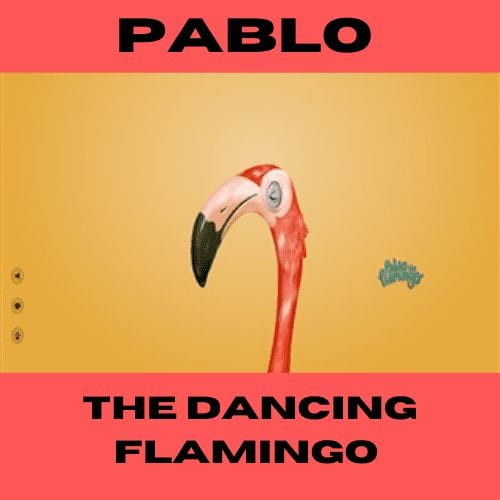 Pablo The Dancing Flamingo