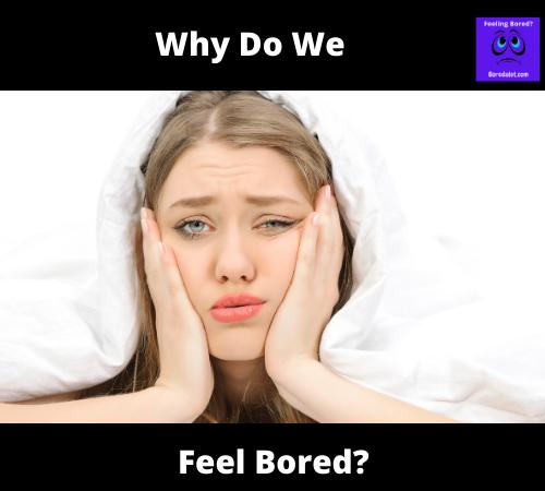 Why Do We Feel Bored