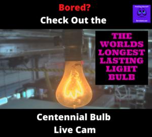 Centennial bulb